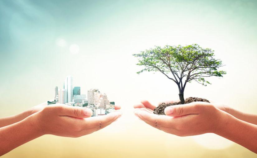 Características del desarrollo sostenible